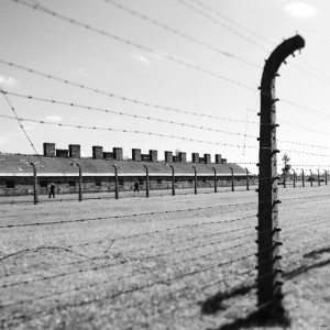 camp guerre auschwitz nazi pologne